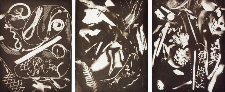 The Things of Life (To See or Not To See), 2013 Aquatint.
