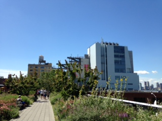 The Whitney from the Highline.